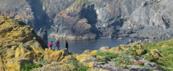 Walk to Asparagus Island