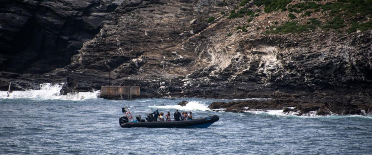 Godrevy Island boat