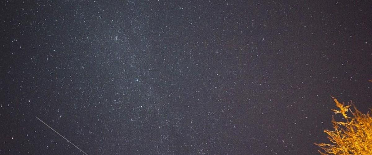 Lundy star gazing